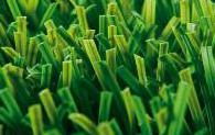 דשא-סינטטי-איכותי